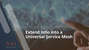 Announcing Universal Service Mesh: Avi Networks Integration